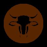 Azienda Agricola Zecchinati; carne di chianina
