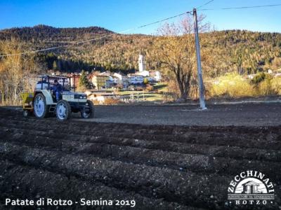 la semina delle più antiche patate dell'Altopiano