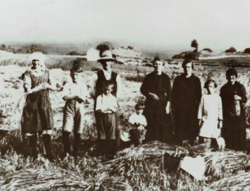 La storia della famiglia Zecchinati