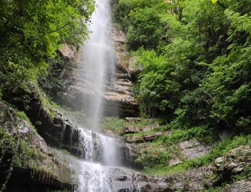 Le Cascate del Pach, i salti d'acqua di Rotzo